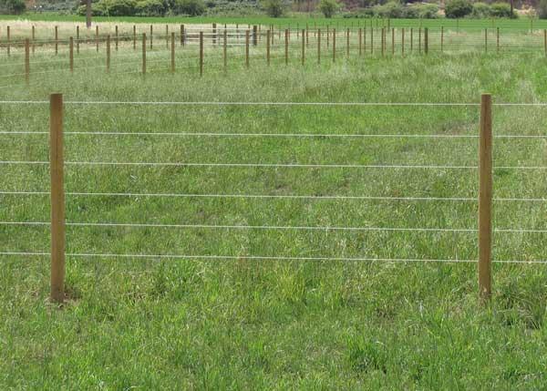 HorseFence Direct - Finish Line Monafilament Fence