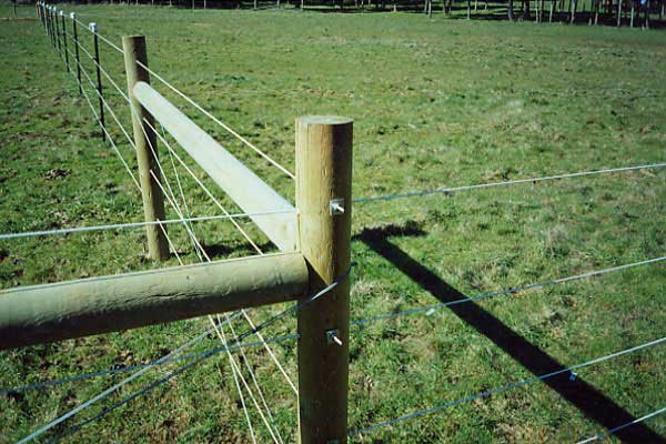 Horsefence Direct Finish Line Monafilament Fence