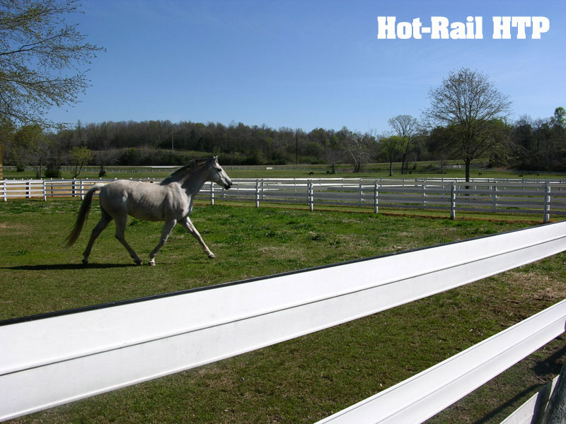 Centaur Hot-Rail Fence